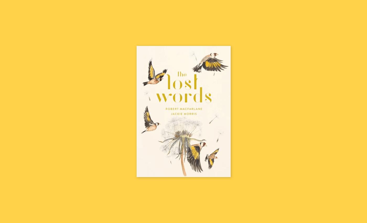 Noisli - Lost Words
