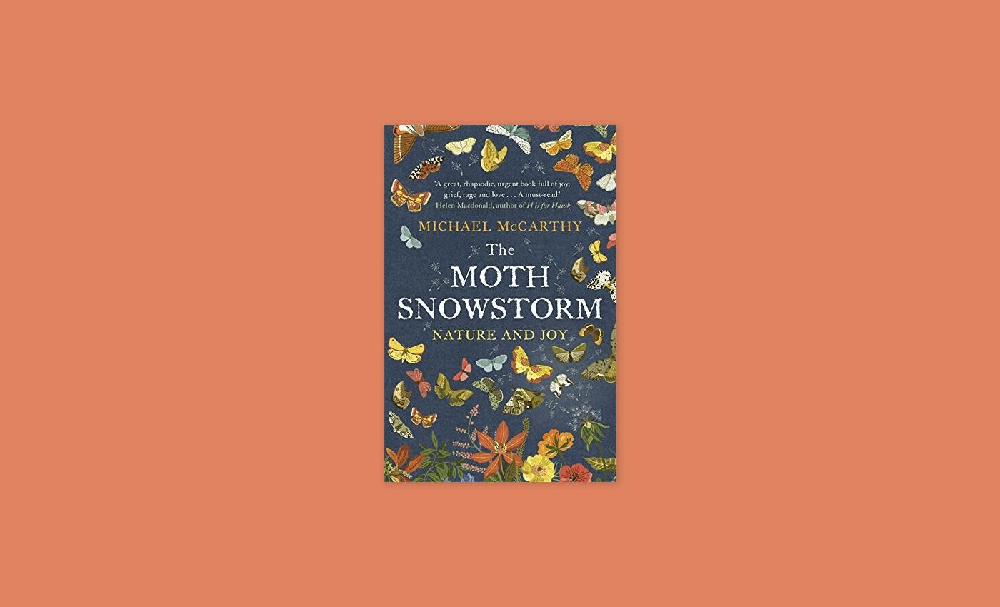 Noisli - The Moth Snowstorm