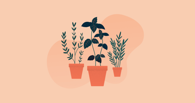 Home gardening for improved wellbeing