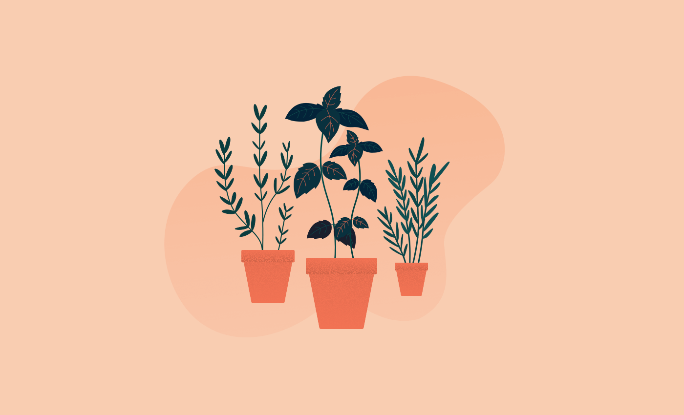 Noisli - Home gardening for improved wellbeing